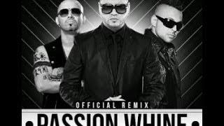 Farruko Ft Sean Paul Y Wisin - Passion Wine (Remix) (Letra)