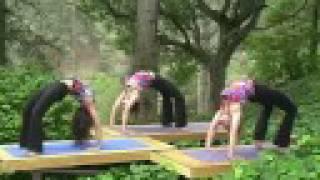 Anusara Yoga - DVD - Heart Flow Vinyasa - Ishwari Gonnot