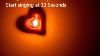 Birdy Ed Sheeran Skinny Love Lower Karaoke