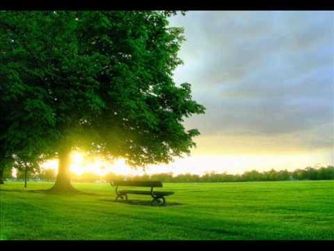 """It's a Beautiful Morning"" - Carroll Roberson"