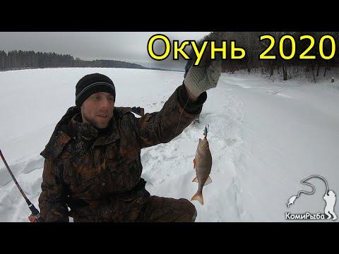 Рыбалка 2020. Открытие сезона твердой воды. Окунь на балансир и мотыль.