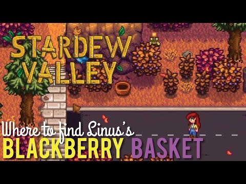 Where to find Linus's Blackberry Basket in Stardew Valley - YouTube