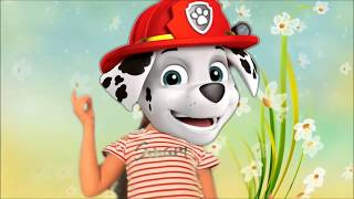 Play Junior Dress Up & Join the PAW Patrol Team #2
