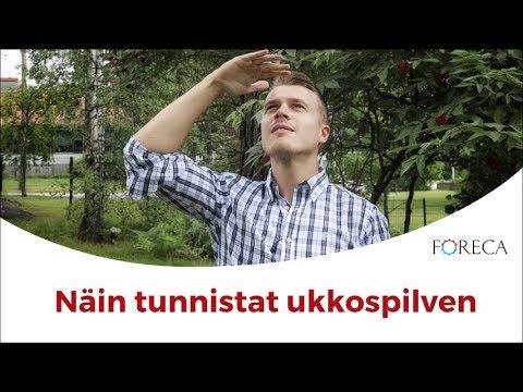 Tunnista Ukkospilvi Ajoissa Ja Laske Salaman Etäisyys!