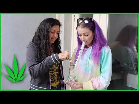 We Rented A ROOR In Amsterdam! | Stoney Sunday | CoralReefer & StoneyXochi
