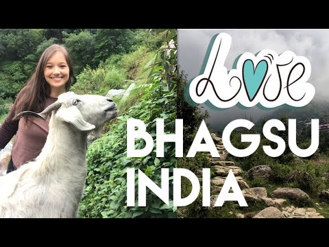 I LOVE U BHAGSU (20 Mins From Mcleod Ganj, Dharamshala, India) Good Vibes In Bhagsu! 💫