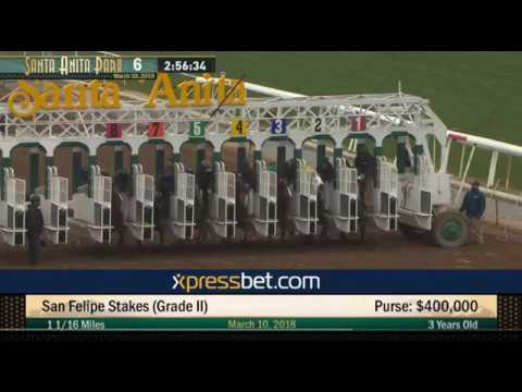 Recap of the San Felipe, Gotham, and Tampa Derby