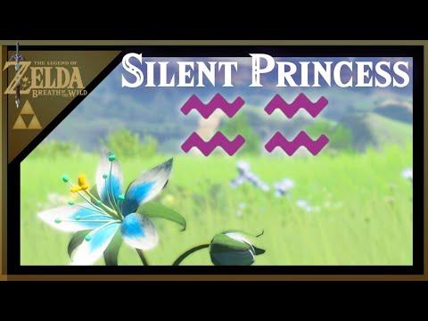 Best Silent Princess Farming Locations-Zelda Breath Of The Wild