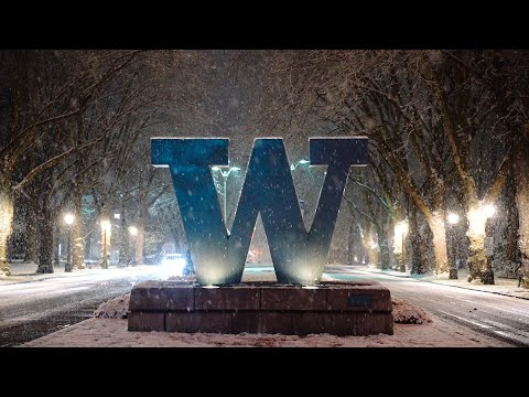 UW Students' Reactions To Seattle's First Snow Of The Decade | The Daily UW Video