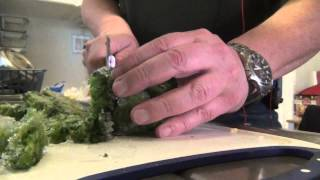 Cooking With David-hearty Leftover Turkey Stew