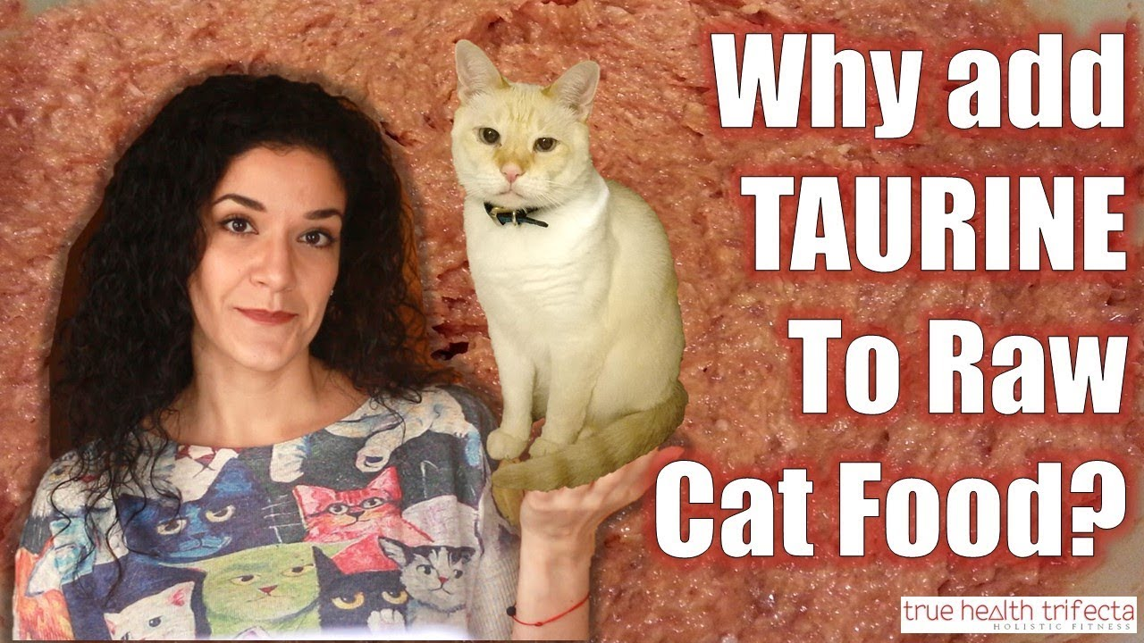 Do i need to add taurine to my raw cat food part 3 of 3 cat do i need to add taurine to my raw cat food part 3 of 3 cat lady fitness forumfinder Choice Image