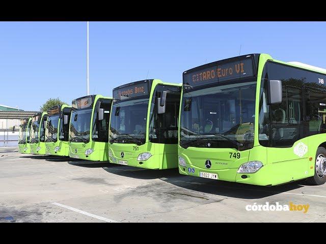 Nuevos autobuses y vendrán más