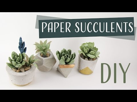 DIY Paper Succulents / Suculentas de Papel Collab: Carte Fini - Part 1