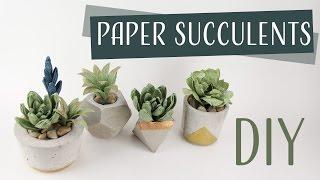 DIY Paper Succulents / Suculentas de Papel Collab: Carte Fini - Part 1