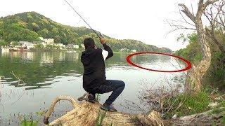 買ったばかりのバス釣り道具で1日中魚を追い求めた!