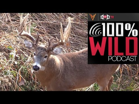 """Mark Drury discusses his 217 2/8"""" Danger and patterning bucks - 100% Wild Podcast 17"""