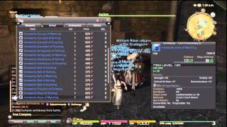 Final Fantasy XIV - Poetics Gear Previewing (Try On) *Patch 2.4*