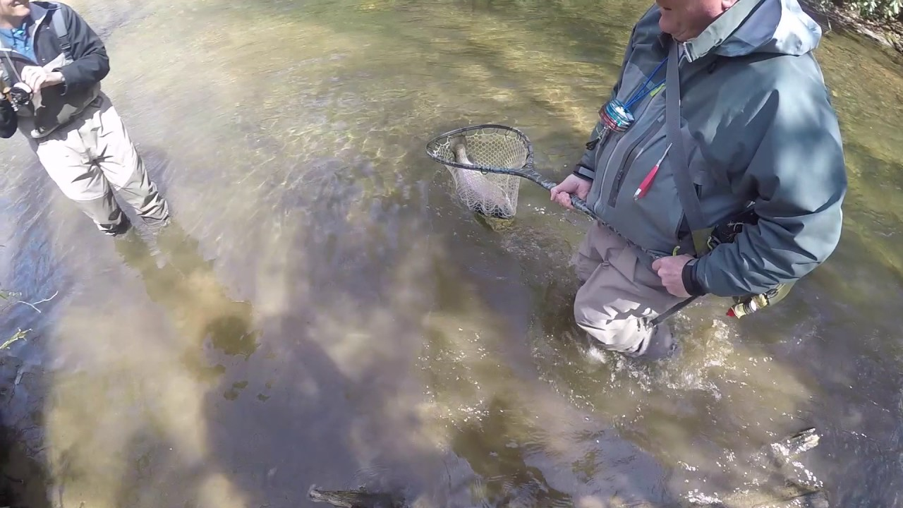 Fly fishing 10 pound rainbow trout helen ga youtube for Trout fishing in helen ga