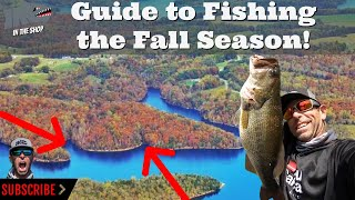 Guide to Fishing the Fall Season