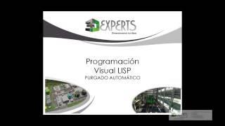 Purgado Automatico - AutoCAD