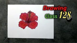 How to Draw Easy China Rose with color step by step, Drawing Class 128