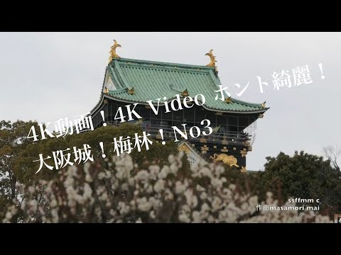 4K動画4K video 梅 大阪城と梅林パート3 Osaka Castle and Bairin forest Part 3
