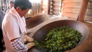 How to Make Raw Puer (Nannuo Mountain, Menghai)