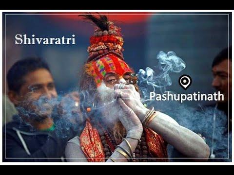 Mahashivaratri 2019 in Pashupatinath