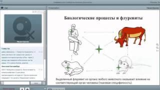 Смотреть видео САД Флуревиты — научные и прикладные исследования   Краснов М  26 09 16 онлайн