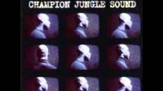 Remarc & Schwarzenegger -- For Real (Remix) Kemet Crew Jungle Champion Sound