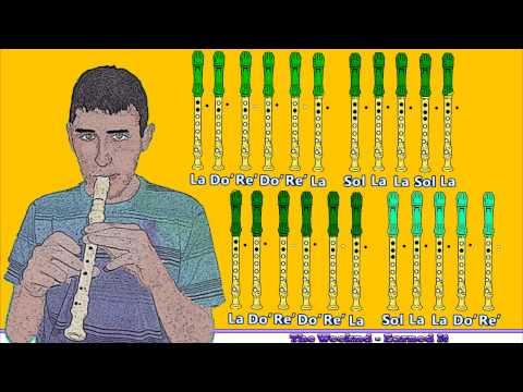Earned It (50 Sombras de Grey) en Flauta Dulce con Notas
