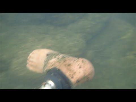 Thumbnail: River Treasure: Is It A Severed Leg???