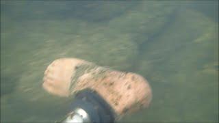 River Treasure: Is It A Severed Leg???