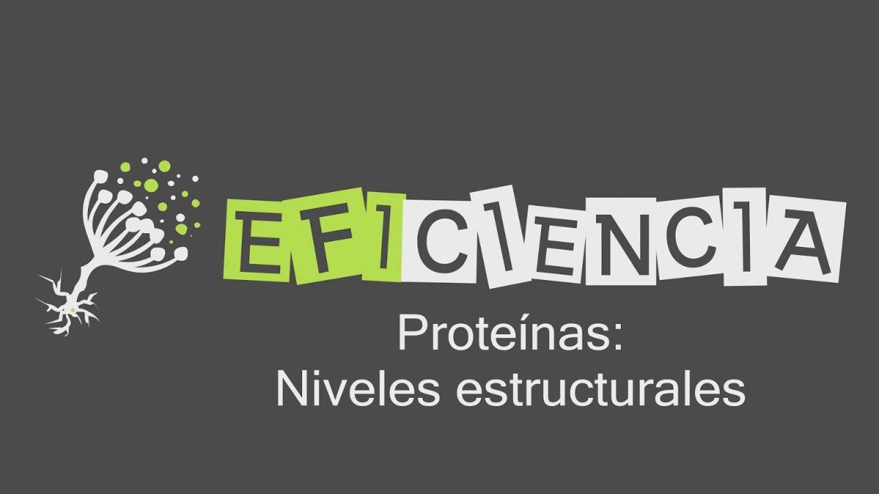 Proteínas Niveles Estructurales Estructura Primaria Secundaria Terciaria Cuaternaria