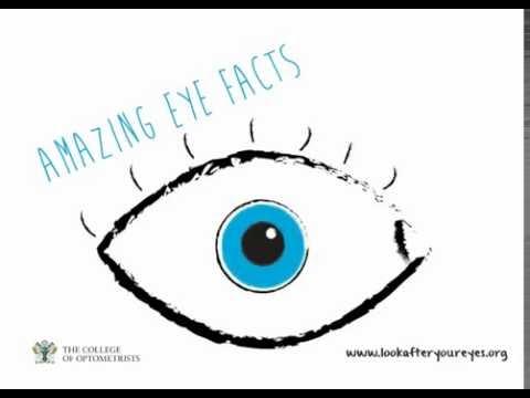 10 amazing eye facts
