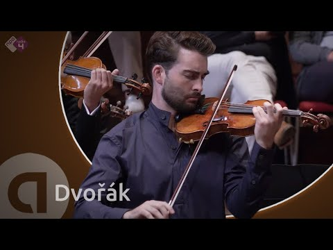Romance In F, Op.11 (Niek Baar & Concertgebouw Kamerorkest)