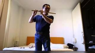 Lời ca dâng Bác... sáo trúc Đinh Linh