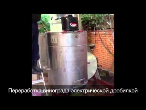 видео: Продам натуральное элитное белое вино Мускат-Оттонель