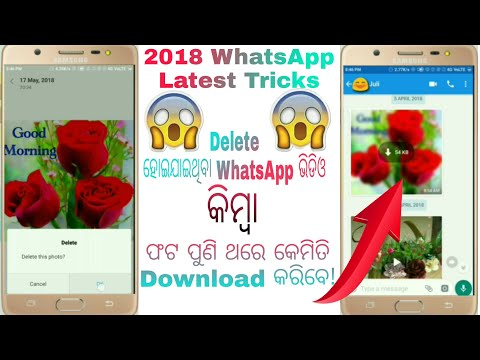 Odia || How to Recover Deleted Whatsapp Photos and Videos || Odia Technical Dost🔥