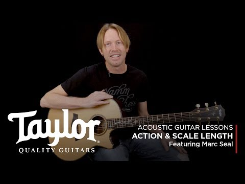 Acoustic Guitar Terminology: Action & Scale Length   Taylor Guitars