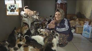 Sen Bir Meleksin! Kedilere Sobalı Ev Yapan 75 Yaşındaki Kadriye Teyzemiz...