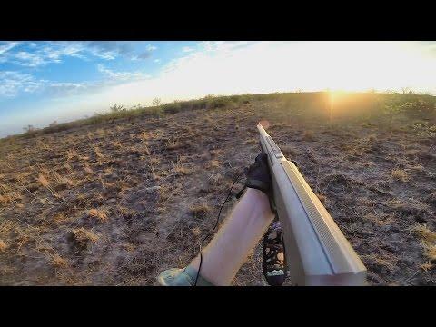 Late Season Pig Hunting North Queensland