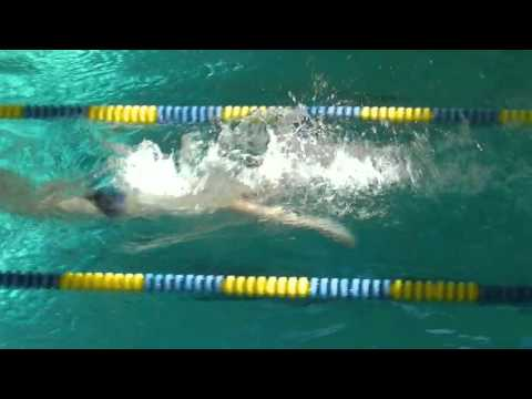 South Lyon Boys' Swim and Dive at Wayne Memorial 2016