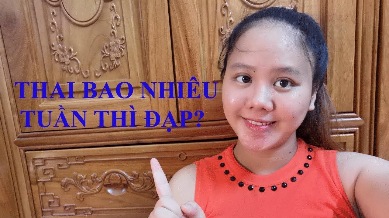 Thai bao nhiêu tuần thì đạp?