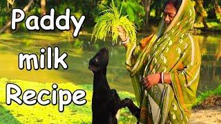 Kheer Recipe - Delicious Paddy Milk Sweet Kheer Recipe Prepared By Mom😋