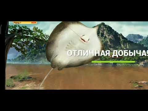Рыбацкая битва прохождение Fishing Clash: Реальная рыбалка