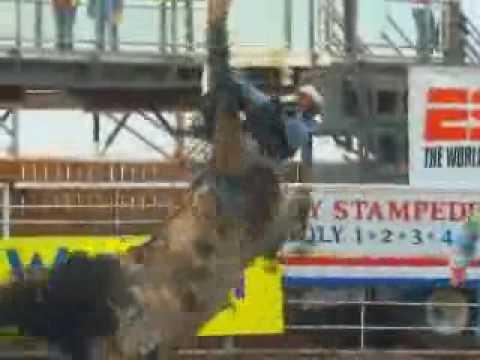 Cody Chamber of Commerce - Wyoming Video
