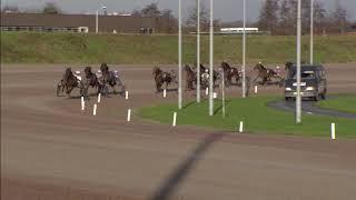 Vidéo de la course PMU PRIX ANNIE WIERDA