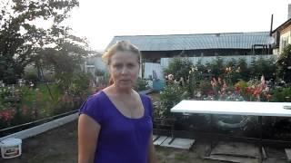 Видеотзыв об интернет магазине мебели мебель172