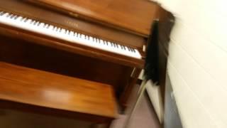 Extreme Piano Marathon - Gus Johnson